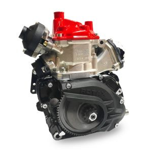 ROTAX 125 SENIOR MAX EVO - BARE ENGINE