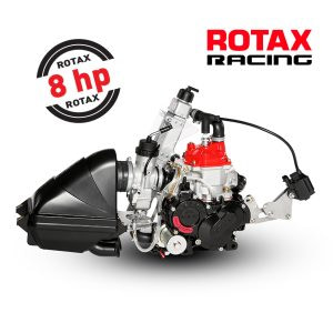 ROTAX 125 MICRO MAX EVO ENGINE KIT