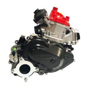 ROTAX 125 MAX DD2 EVO - BARE ENGINE
